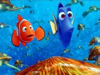 Nemo - where is Nemo