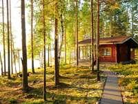 Stuga vid sjön i Finland online pussel