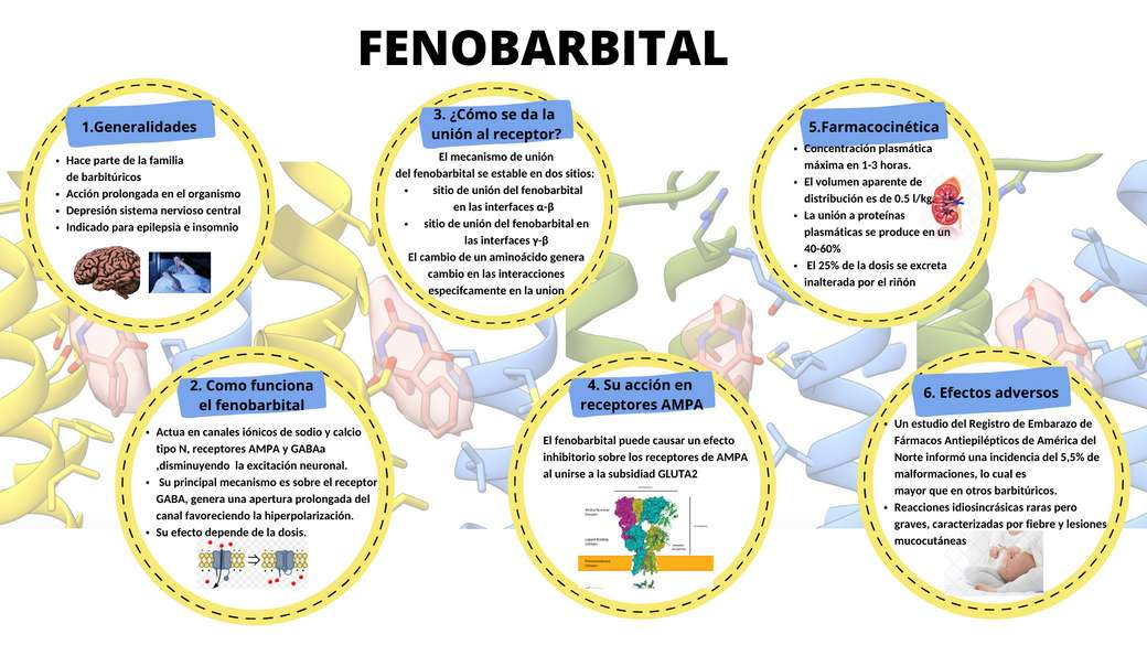 fenobarbital puzzle