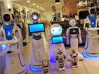 serveurs robotiques