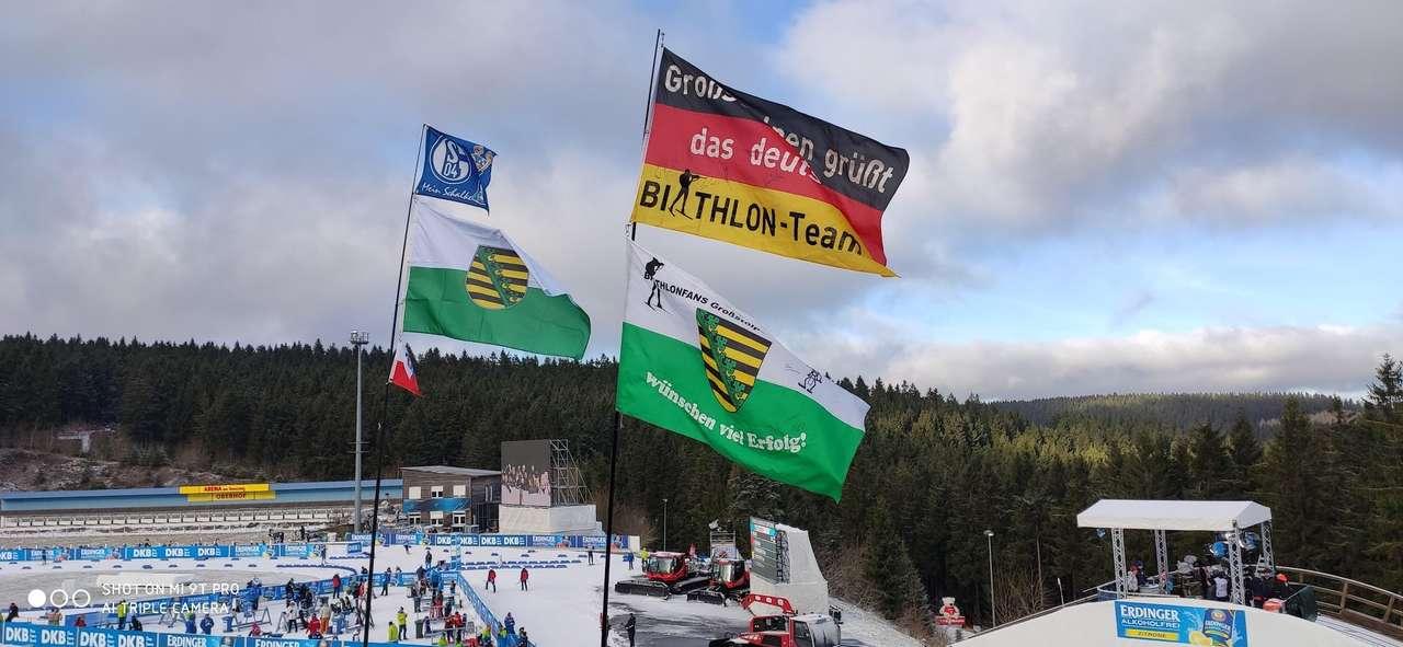 Biathlon 2020 in Oberhof online puzzel