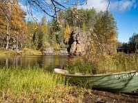 barna kenu, zöld fű, tó közelében, nappali