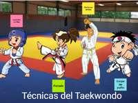 Tecniche di base del Taekwondo