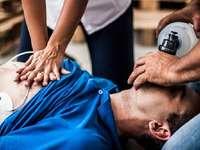 CPR-Puzzle